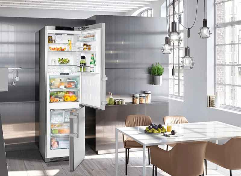 10 лучших двухкамерных холодильников с No Frost