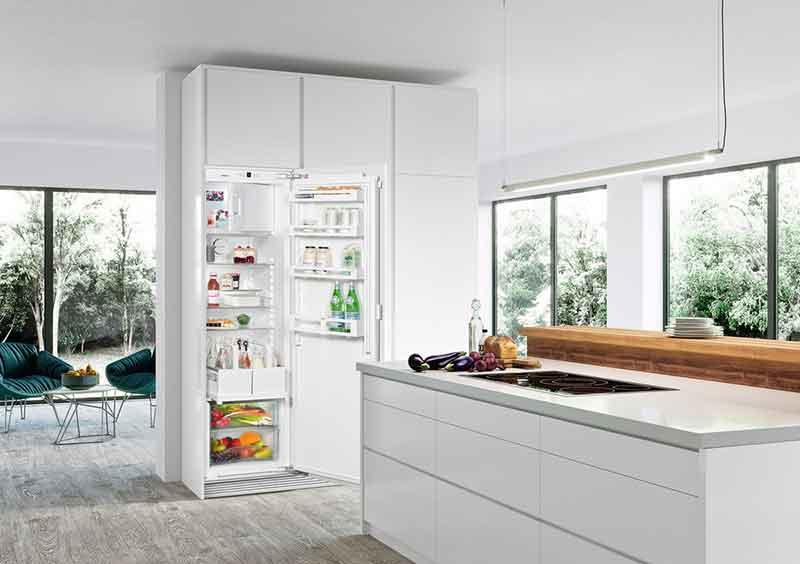 8 лучших встраиваемых холодильников No Frost