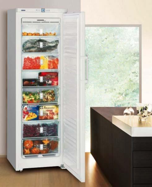 10 лучших морозильных камер для дома
